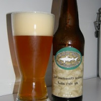 Review of Dogfish Head 60 Minute IPA