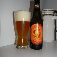 Review of Magic Hat #9