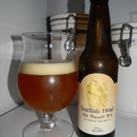 Review of Dogfish Head 120 Minute IPA