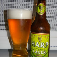 Review of Harp Lager