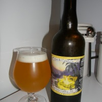 Review of Jolly Pumpkin Oro de Calabaza
