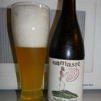 Review of Dogfish Head Namaste