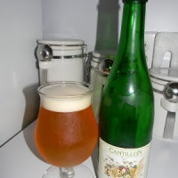 Review of Cantillon Vigneronne (2011)