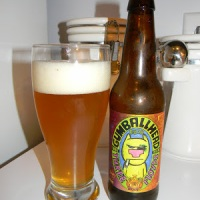 Review of Three Floyds Gumballhead