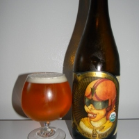 Review of Jester King Das Überkind